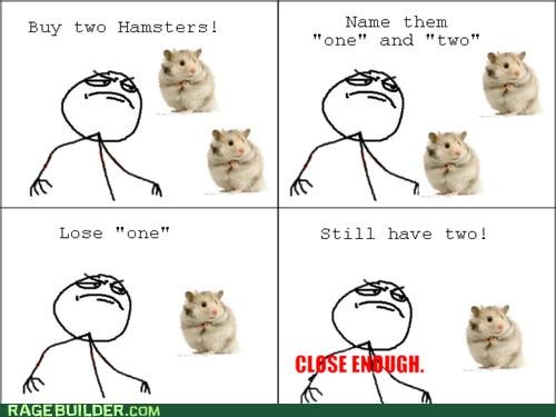 Close Enough hamsters names pets Rage Comics two - 5021305344