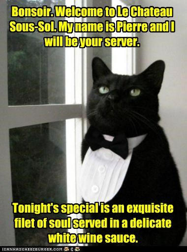 basement cat,bonsoir,caption,captioned,cat,entree,restaurant,server,serving,soul,special
