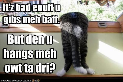 It'z bad enuff u gibs meh baff. But den u hangs meh owt ta dri? It'z bad enuff u gibs meh baff. But den u hangs meh owt ta dri?