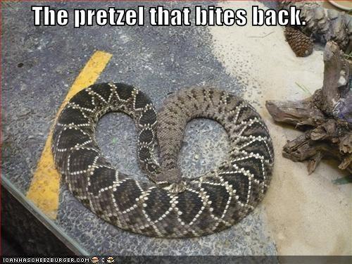 back bites biting caption captioned pretzel shape snake - 5023181056