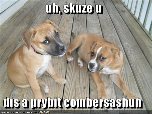 boxer friends go away private conversation puppies puppy talking - 5023406592