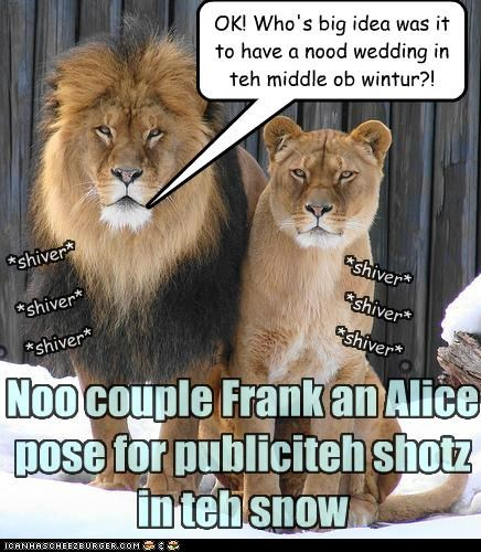 Noo couple Frank an Alice pose for publiciteh shotz in teh snow