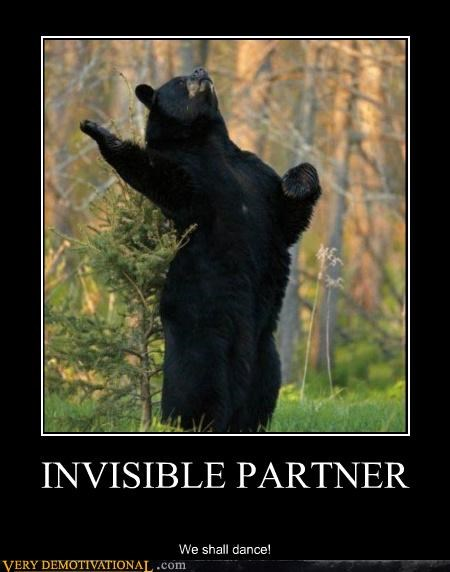animals,bear,dancing,hilarious,invisible