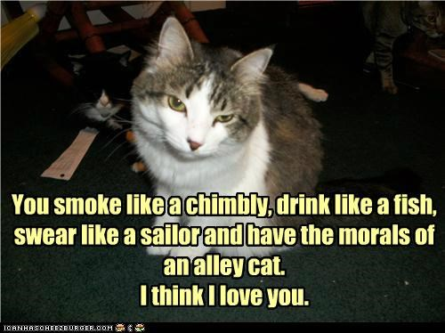 caption captioned cat drink Hall of Fame love reversal sailor simile similes smoke - 5023843840
