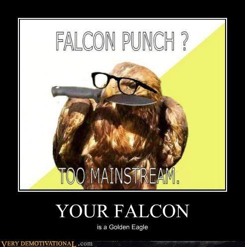 bird eagle falcon hilarious mainstream