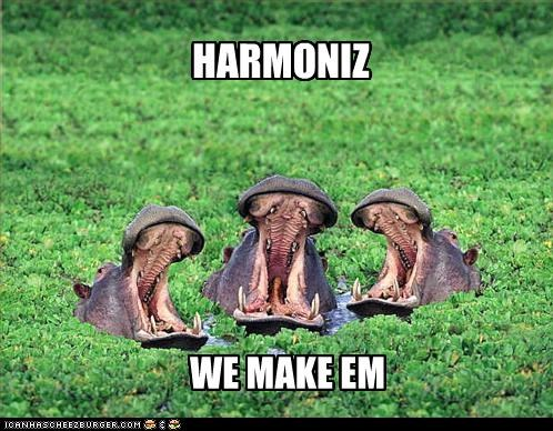 caption captioned harmonies hippo hippopotamus hippos making singing - 5024692736