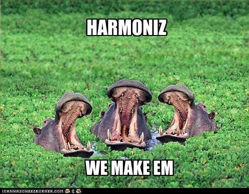 caption captioned hippo hippopotamus hippos making singing - 5024692736
