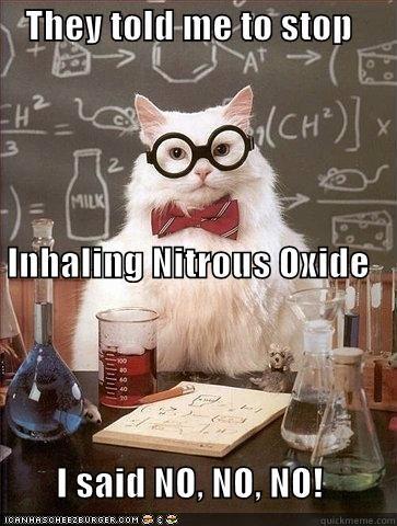 amy winehouse chemistry cat nitrous oxide rehab