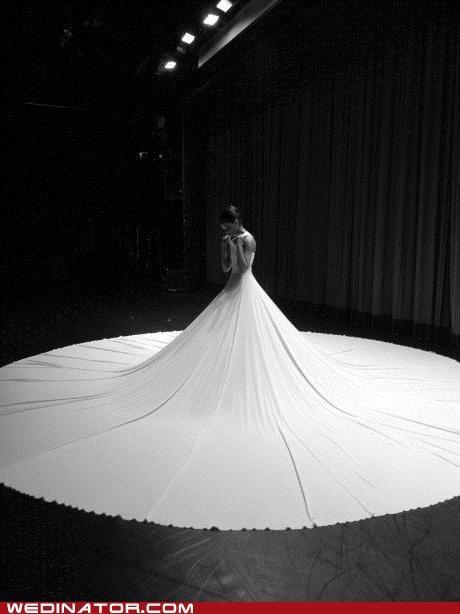 bridal gown bride funny wedding photos wedding dress - 5025117952
