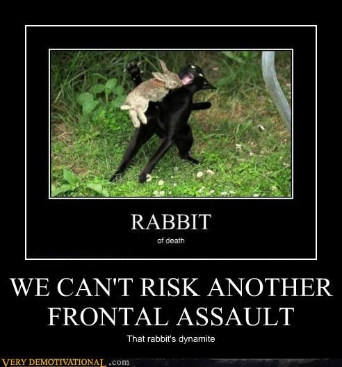 frontal assault,hilarious,holy grail,monty python,rabbit