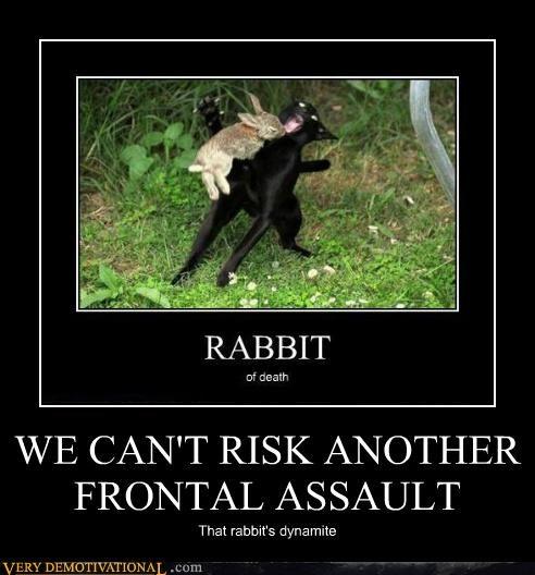 frontal assault hilarious holy grail monty python rabbit - 5025298688