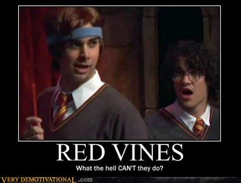 amazing,magical,Pure Awesome,red vines