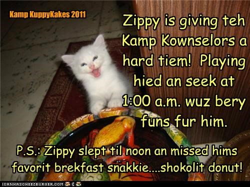 Zippy is giving teh Kamp Kownselors a hard tiem! Playing hied an seek at 1:00 a.m. wuz bery funs fur him. P.S.: Zippy slept til noon an missed hims favorit brekfast snakkie....shokolit donut! Kamp KuppyKakes 2011