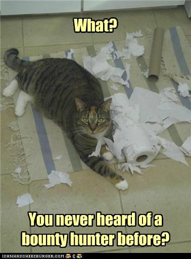 bounty,bounty hunter,brand,caption,captioned,cat,hunter,paper towel,pun,what