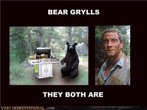 bear,bear grylls,grill,hilarious,wtf