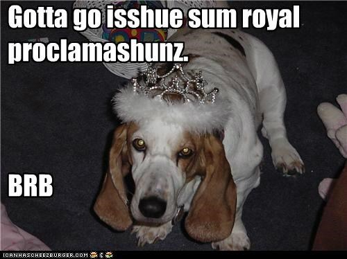 basset hound crown fancy official business princess royal proclamation royalty
