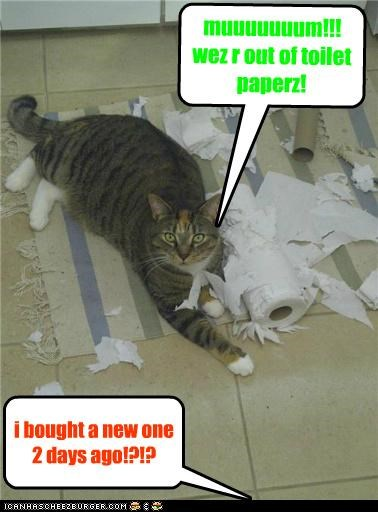 muuuuuuum!!! wez r out of toilet paperz! i bought a new one 2 days ago!?!?