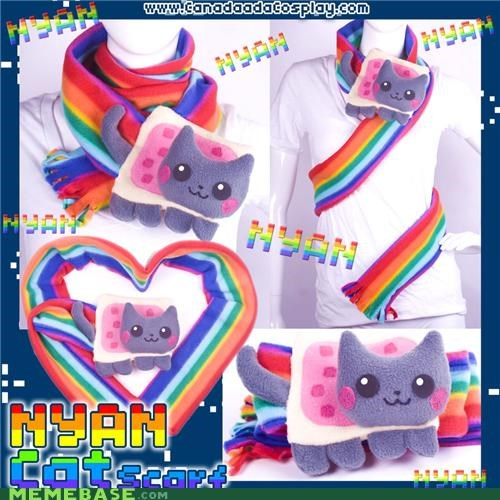 cat,clothes,IRL,Nyan Cat,real life,scarf