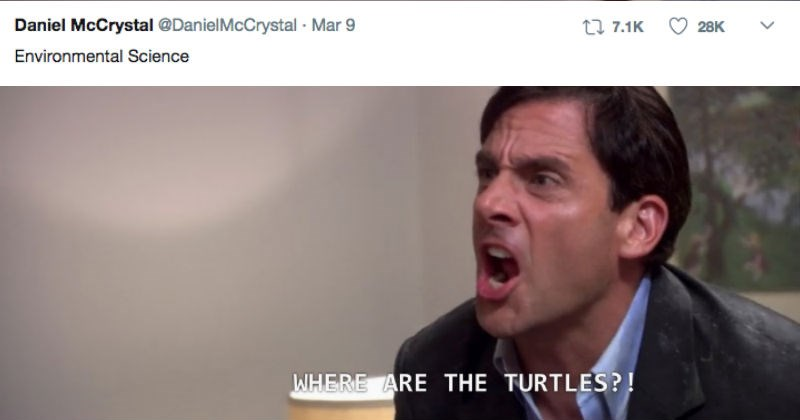 twitter major the office steve carell Michael Scott funny college win - 5028869