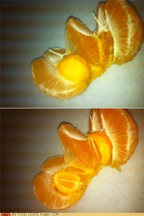 mini orange Orangeception tumor - 5028994048