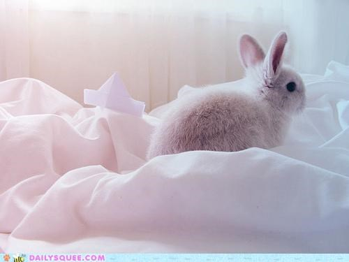 boating,boats,Bunday,bunny,celebration,happy,happy bunday,origami,paper,rabbit