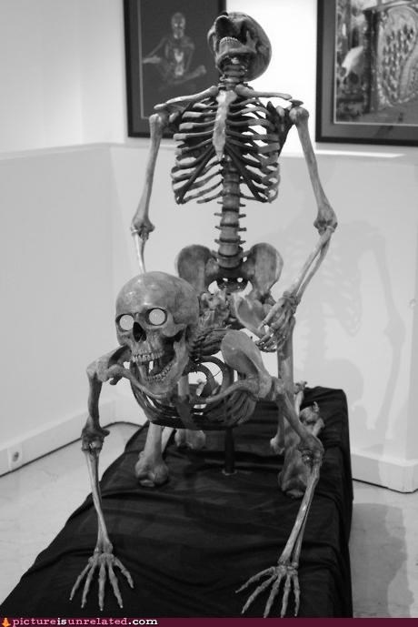 boning eyes sexy times skeleton wtf