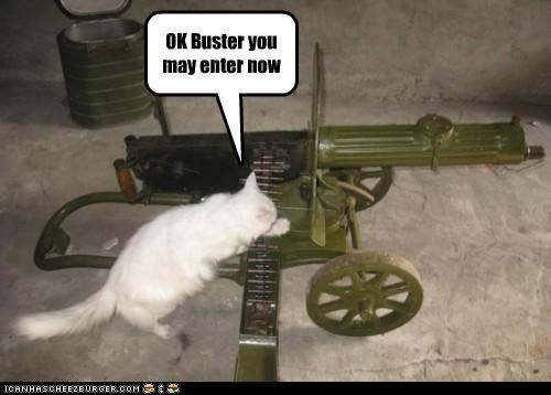 OK Buster you may enter now