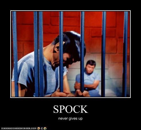 SPOCK never gives up