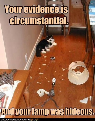 caption,captioned,cat,circumstantial,denial,denying,evidence,excuse,Hall of Fame,hideous,lamp,mess