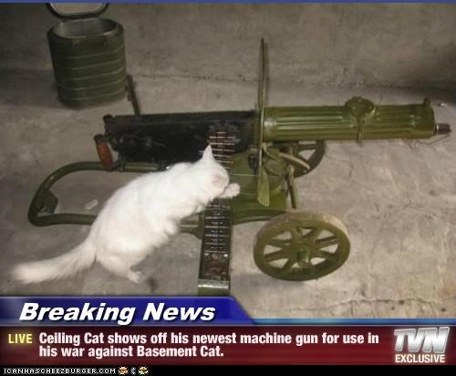 Breaking News - Ceiling Cat shows off his newest machine gun for use in his war against Basement Cat.