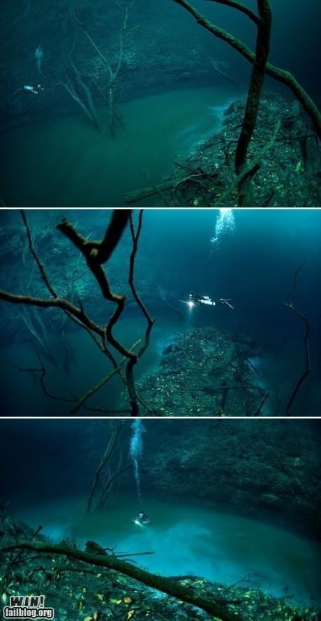 diving scuba sea underwater - 5032238336