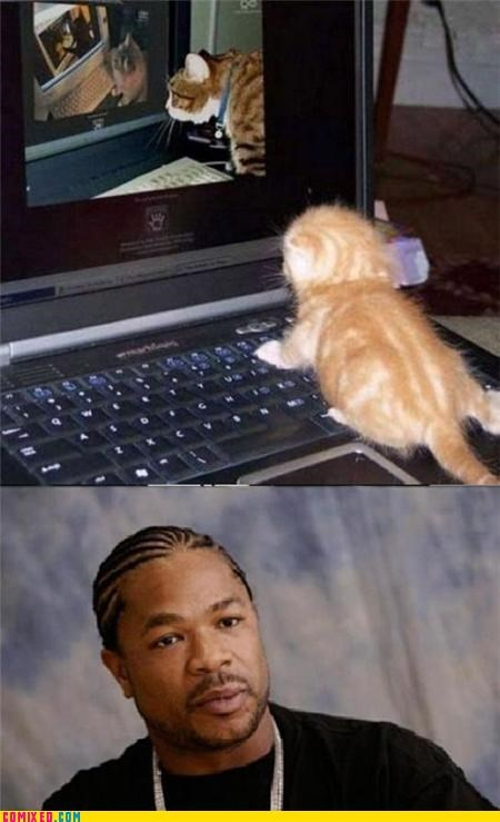 cat,computer,Inception,Xxzibit,Xzibit