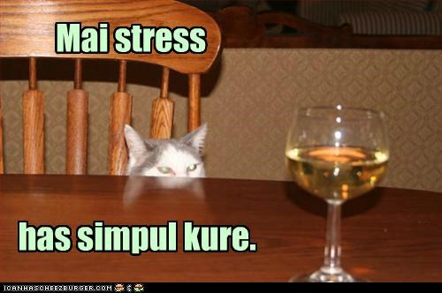 alcohol,caption,captioned,cat,cure,glass,simple,stress,wine