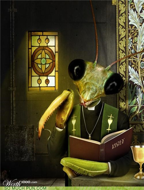 bible,double meaning,literalism,mantis,praying,praying mantis,priest