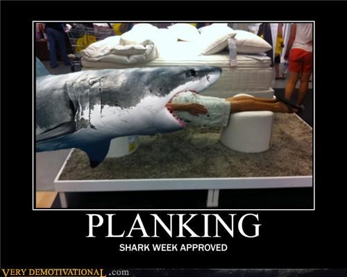 awesome Planking Pure Awesome shark week sharks wishes - 5035696128