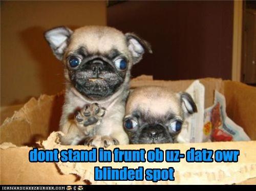 dont stand in frunt ob uz- datz owr blinded spot