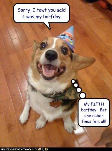 Sorry, I tawt you said it was my barfday. My FIFTH barfday. Bet she neber finds 'em all!