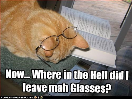 book caption captioned cat confused glasses leave left misplaced now question tabby where