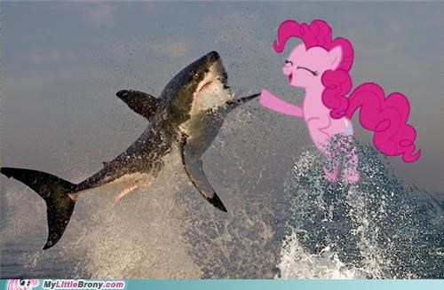 bro hoof,discovery channel,great white,pinkie pie,shark week