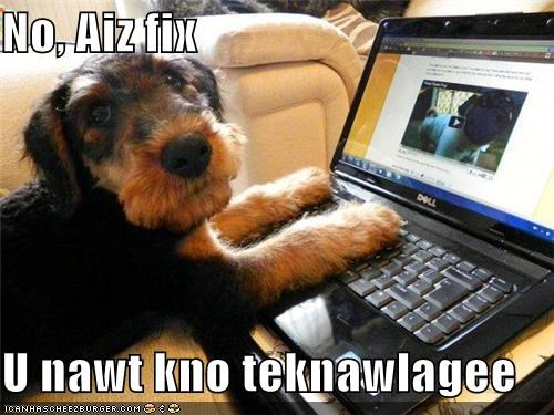 Cheezburger Image 5037011712