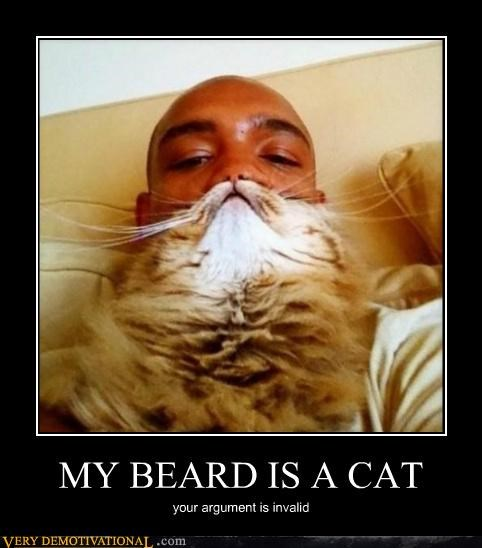 awesome beard cat dude Hall of Fame Pure Awesome - 5037044480