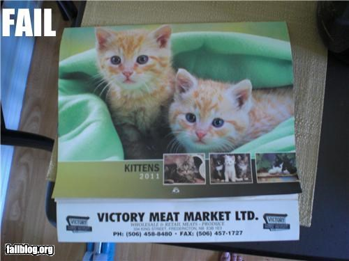 advertisement Cats failboat food g rated juxtaposition