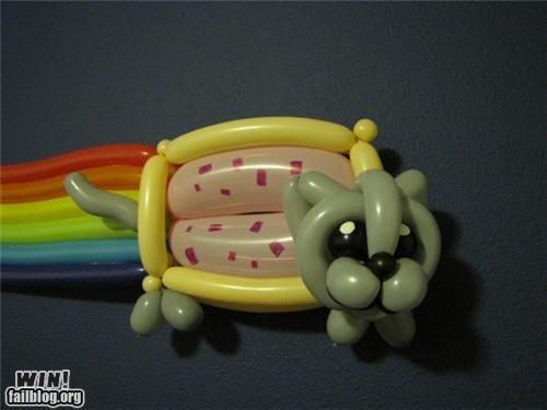 Balloons Meme IRL Nyan Cat - 5038287616