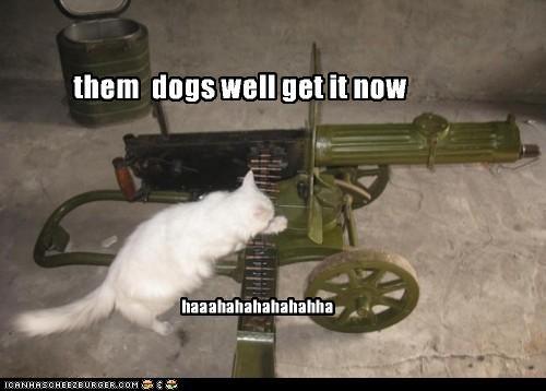 them dogs well get it now haaahahahahahahha