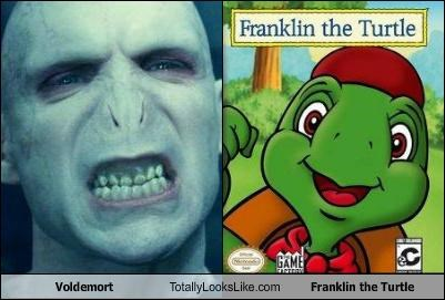 fictional characters,Franklin the Turtle,Harry Potter,no nose,turtle,voldemort