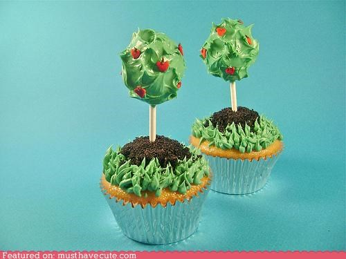 cupcakes,epicute,grass,plants,roses,topiary,trees