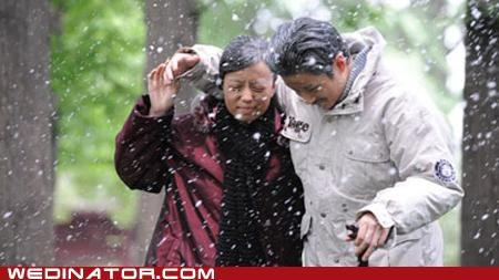 aging photos China funny wedding photos - 5039192320