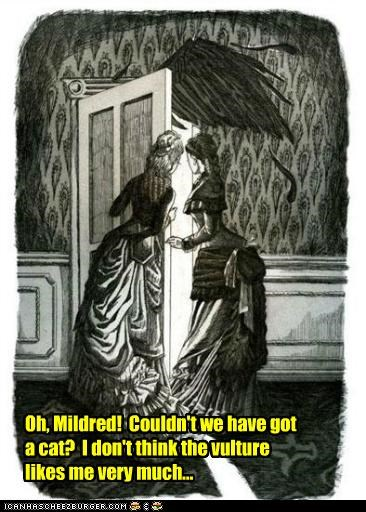 Oh, Mildred! Couldn't we have got a cat? I don't think the vulture likes me very much...