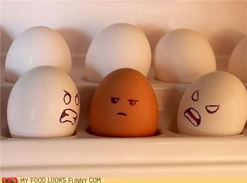 brown deicrimination eggs fridge racist tolerance white - 5039882496