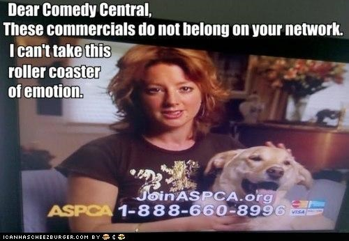 aspca,comedy central,commercials,emotions,roflrazzi,Sad,Sarah McLachlan